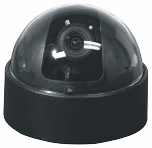 Auto Iris Varifocal Dome Black and White Wired Camera with Plug & Play